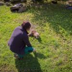 VergissMeinNicht Zoo Hoyerswerda – 15
