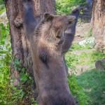 VergissMeinNicht Zoo Hoyerswerda – 20