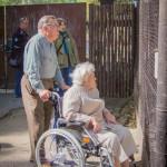 VergissMeinNicht Zoo Hoyerswerda – 23