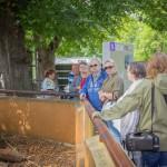 VergissMeinNicht Zoo Hoyerswerda – 25