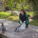 VergissMeinNicht Zoo Hoyerswerda – 31